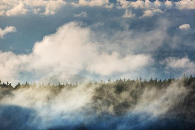 높은 산에 안개. 아름다운 자연 경관.