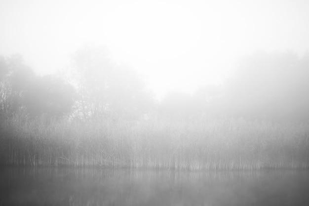 Туман в озере. утренняя вода природы и белый туман.