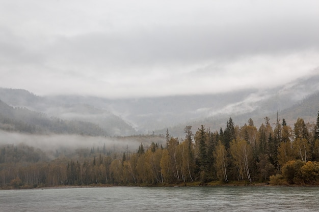山の霧。曇った森。川。