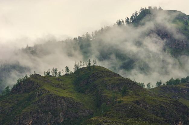 Туман в горах. пасмурная погода. алтай.