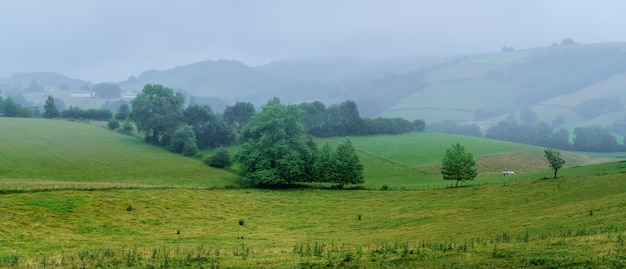 Fog landscape in the countryside of the french basque country. france