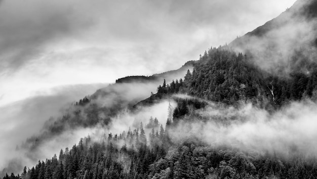 Fog on mountain top in alaska in black and white