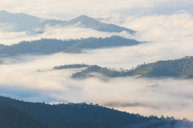 The fog moves along the mountains in the morning and the sunlight in winter.