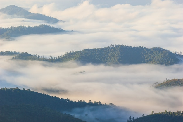 Fog moves along the mountains in the morning and the sunlight in winter.