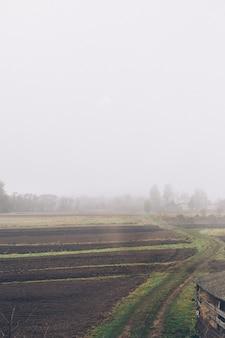Туман на поле старой страны