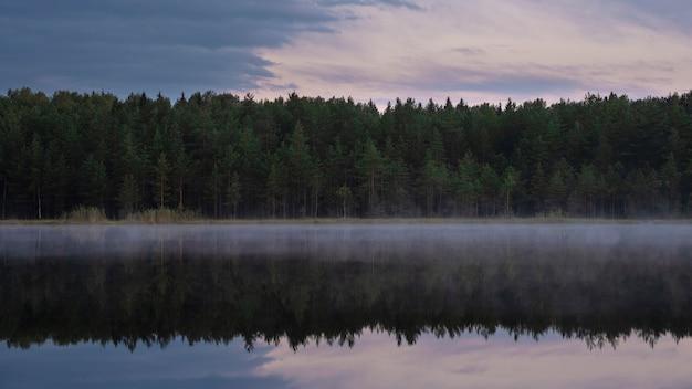北の森の湖の霧。トウヒの木が水に反映されます