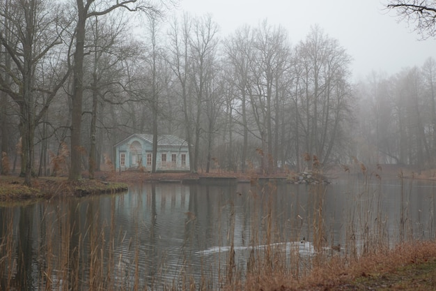 Tsarskoeseloの秋のアレクサンダー公園の水に霧