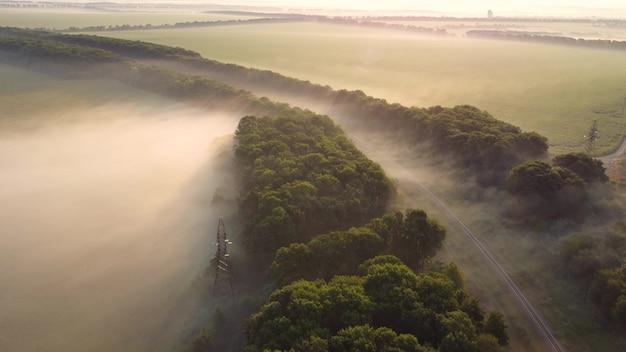 森と線路の上の霧。