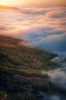 Fog on the slopes of teide, tenerife