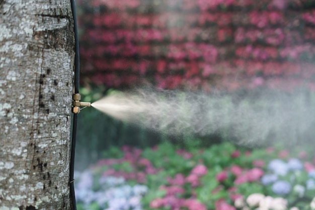 Fog water spray nozzle setup on tree for watering plant