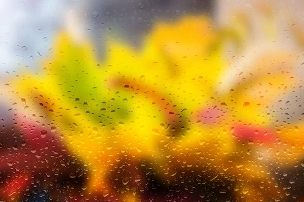 많은 방울, 가을 노랑 및 빨강 잎으로 안개가 자욱한 유리