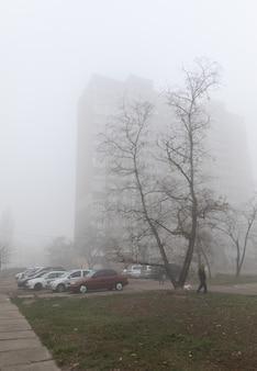 街の霧の秋の朝。生態学的概念。寒くて暗い秋の朝の街の通りの深い霧。