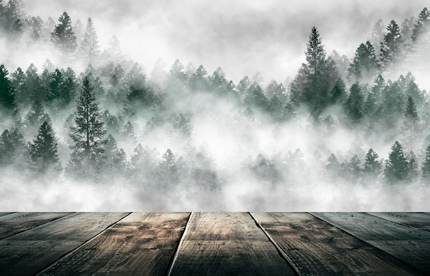 Туманный темный лес. туман, смог. дикая природа леса, лесной пейзаж. темный лес, ночной вид
