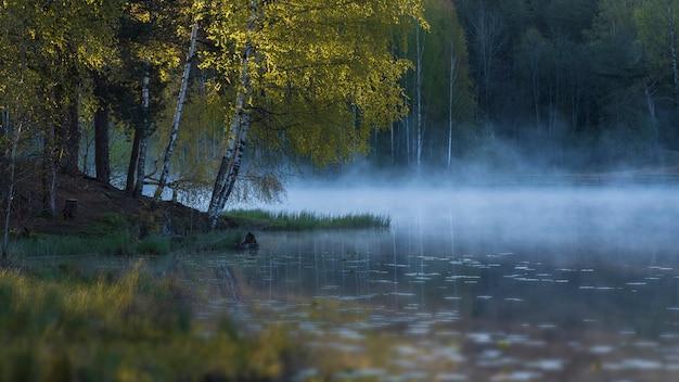 夏の白樺の森の霧の湖