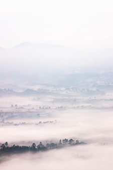 Foggy landscape located in bandung, indonesia