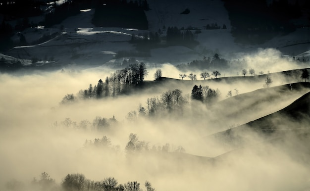 Foggy and misty landscape