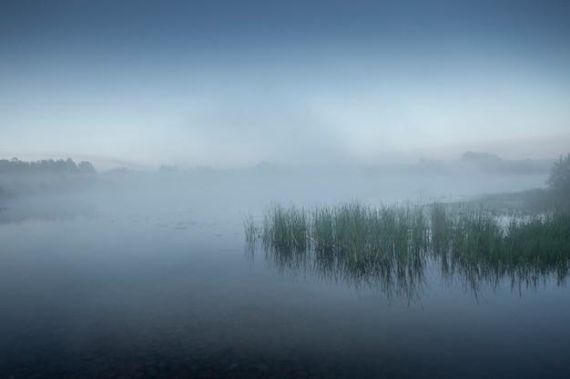 湖のほとりの霧の朝