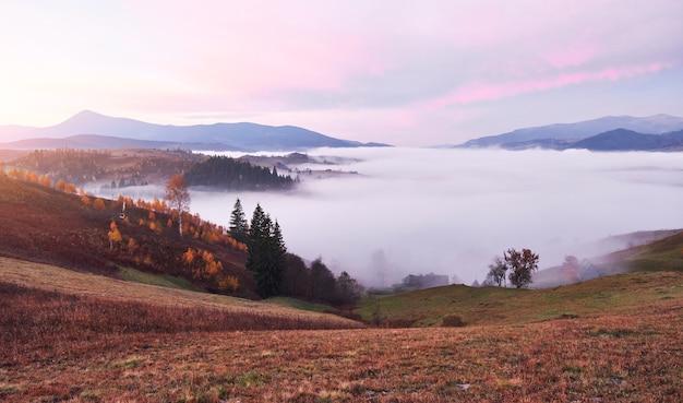 秋の季節のウクライナのカルパティア山脈の霧の朝。