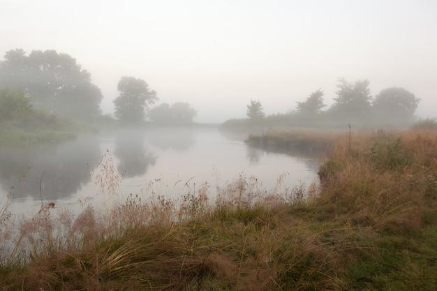 川の霧の朝