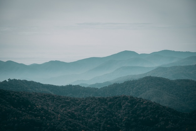 우울한 하늘 아래 안개가 자욱한 산 풍경