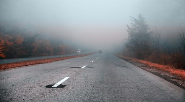 朝の霧の道。