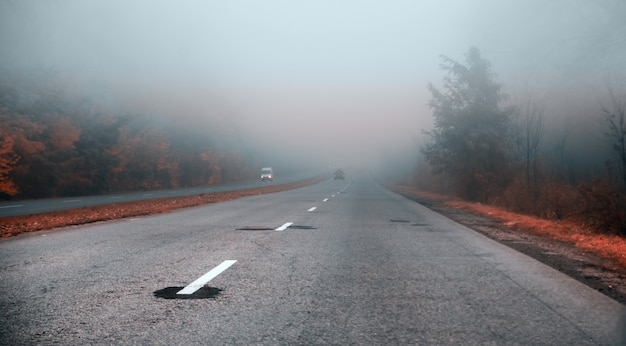 Foggy road in the morning.