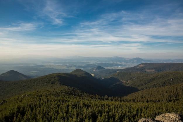 山の霧の夏の朝。カルパティア、ウクライナ、ヨーロッパ。美容の世界。