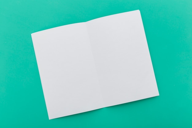Folded blank brochure