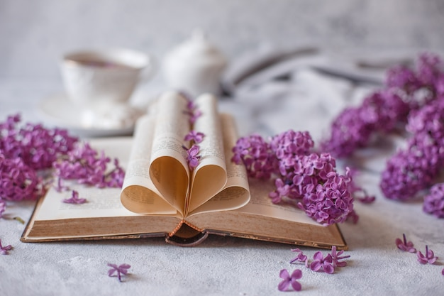 Сложенные страницы старинной французской книги с ветвями цветущей сирени и лепестками цветов