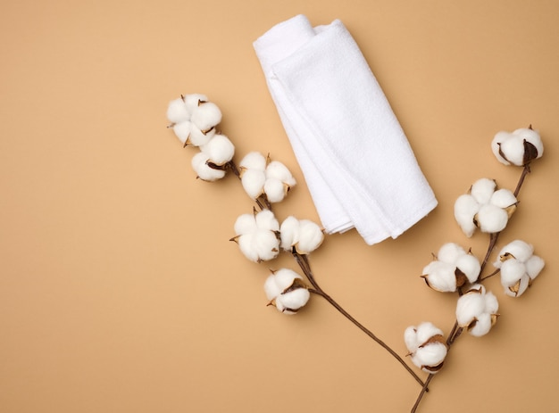 Folded white cotton terry towel and sprigs of cotton flower on a light brown background, top view
