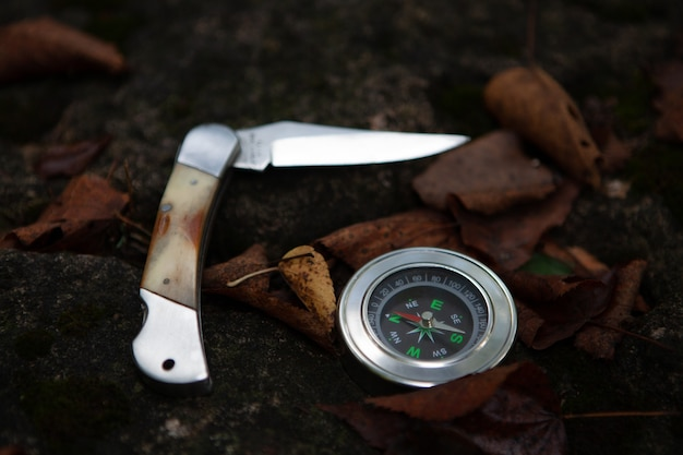 Folding knife, leaves and compass