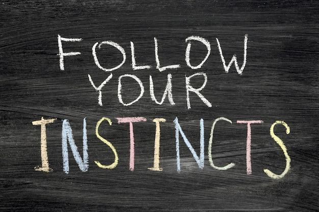 Follow your instincts phrase handwritten on blackboard