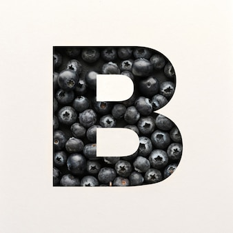 Font design, abstract alphabet font with blueberry, realistic fruits typography - b