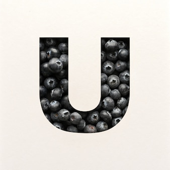 Font design, abstract alphabet font with blueberry, realistic fruits typography - u