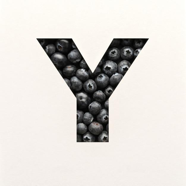 글꼴 디자인, 블루 베리가있는 추상 알파벳 글꼴, 사실적인 과일 타이포그래피-y
