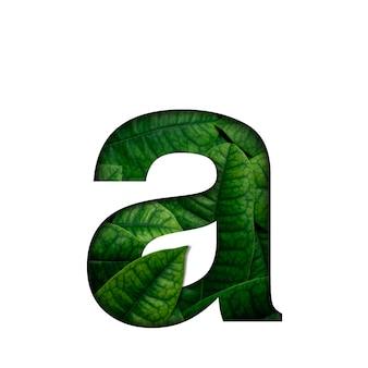 Fontは、real aliveで作られた葉を、プレシャスペーパーカットの形で残します。