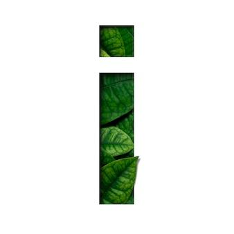 フォントは私が本物の生きた葉で作った葉を貴重な紙で切った形にしています。