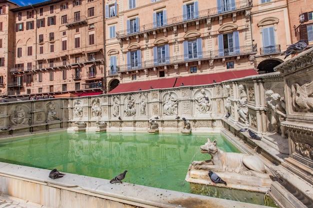 Fonte gaia at piazza del campo in siena