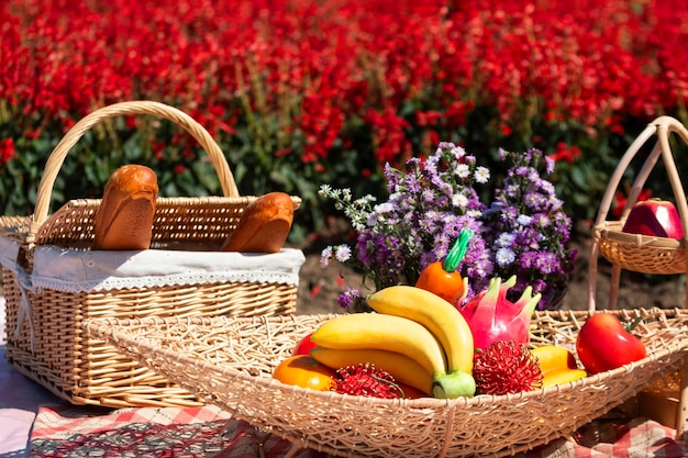 Food, bread, fruit and beverages for picnick on red salvia flowers in the garden are blooming