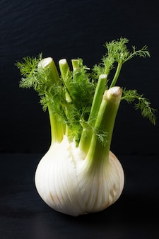 Food concept spot focus oganic fennel on black slate stone board with copy space