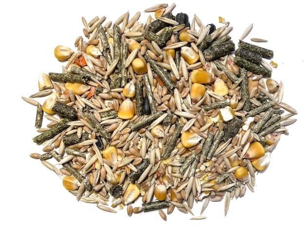 흰색 배경에 격리된 귀리, 잔디 알갱이, 동물 사료, 옥수수, 밀의 설치류를 위한 음식.