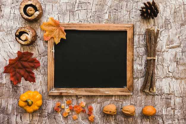 Food and parts of tree around blackboard