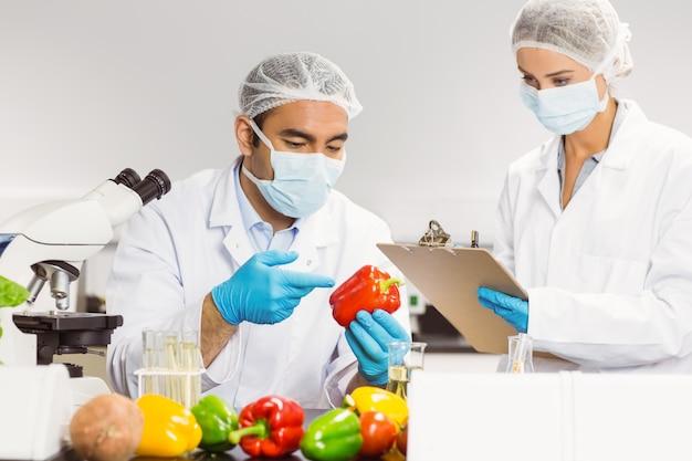 胡椒を調べる食品科学者