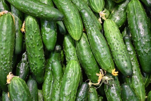 食品野菜の新鮮な緑のきゅうり、背景。市場での販売のためのきゅうりパターン