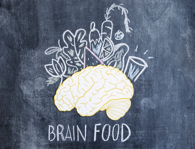 Foods drawn with chalk on paper cutout brain over the chalkboard