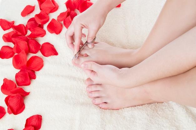 フットケア。美しい女性の脚とバラの花びら Premium写真