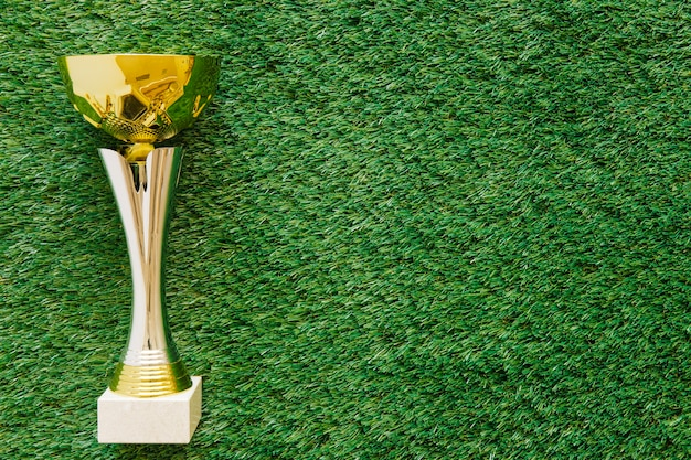 Football background on grass with trophy and copyspace