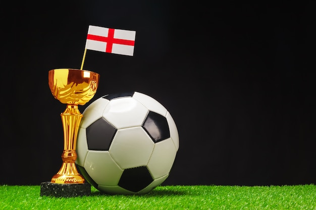 Football cup with football ball on grass