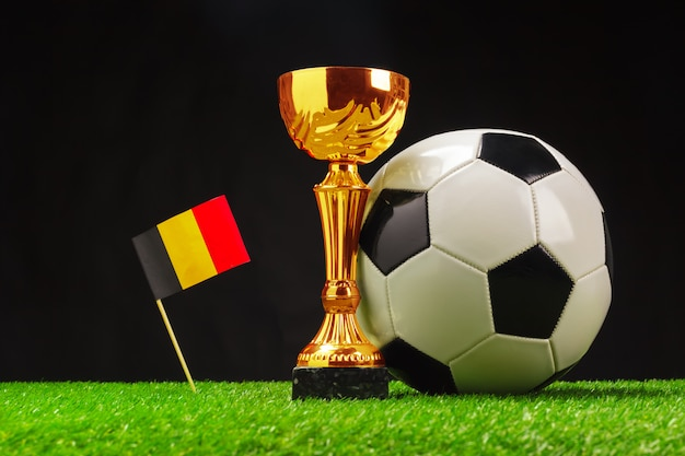 Football cup with football on grass
