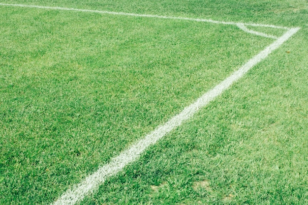 Football field, green lawn with a line drawn with white paint
